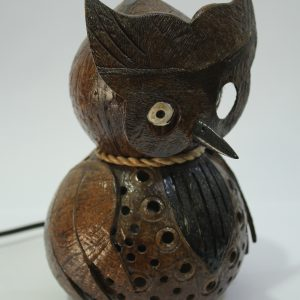 Owl Coconut Lamp